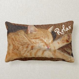 Entspannende Katze Lendenkissen