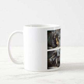 Entspannung mit den Hunden Kaffeetassen