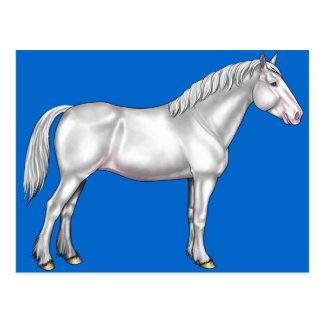 Entwurfs-Pferd - Weiß Postkarte