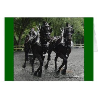 Entwurfs-Pferde im Schritt Karte