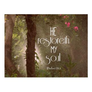 Er restoreth mein Soul-Bibel-Vers Postkarte