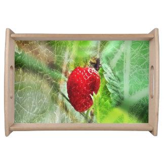 Erdbeer tray