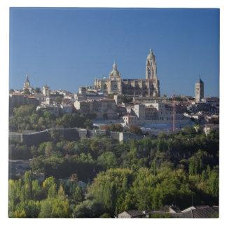Erhöhte Stadtansicht mit der Segovia-Kathedrale Fliese