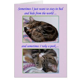 Ermutigungs-Gruß-Karte, Fotos einer Katze Karte