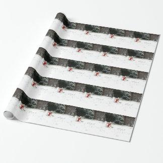 Ernie das Socken-Affe-Schnee-Packpapier Geschenkpapierrolle