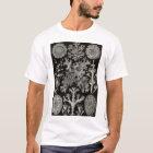 Ernst Haeckel - Lichenes T-Shirt