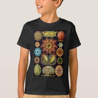 Ernst Haeckels Ascidiae Ozean-Leben T-Shirt