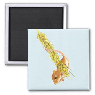 Ernte-MäuseWasserfarbe-Malerei-Grafik-Geschenke Quadratischer Magnet