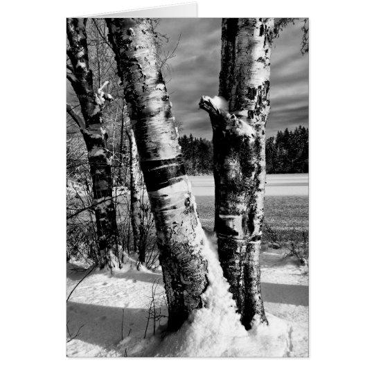 Erster Schnee 2007 Mitteilungskarte