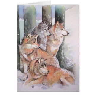 Erster Schnee. Wolfsrudel. Rote Wölfe Karte