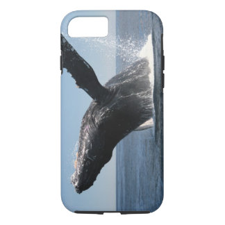 Erwachsenes Buckel-Wal-Durchbrechen iPhone 8/7 Hülle