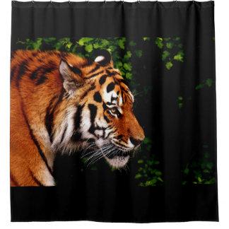 Erwachsenes wildes Tiger-Recht-Gegenüberstellen Duschvorhang