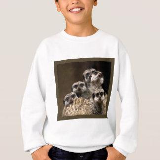 Es gibt eins in jeder Menge… Sweatshirt