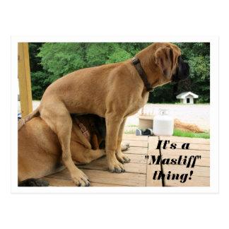 """Es ist A """"Mastiff"""" Sache! alberne englische Postkarte"""