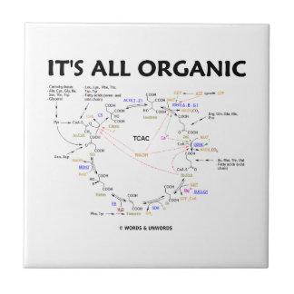 Es ist alles Bio (Krebs Zyklus-Spaß) Kleine Quadratische Fliese