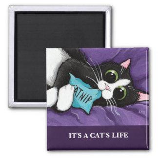 Es ist Katzen-Kunst-Magnet einer Katze des Leben-|
