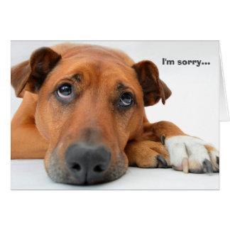 Es tut mir leid Hundekarte Grußkarte