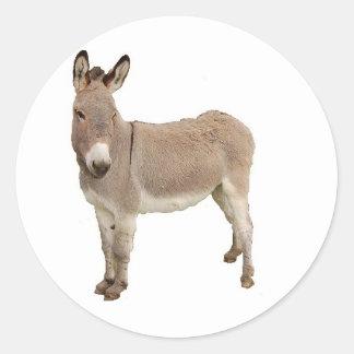 Esel-Fotografie-Entwurf Runder Aufkleber