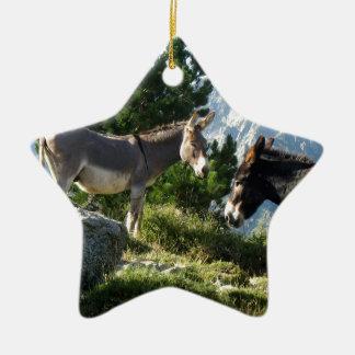 Esel von Korsika Keramik Stern-Ornament
