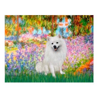 EskimoSpitz 1 - Garten Postkarte