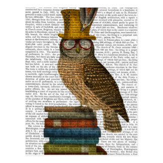 Eule auf Büchern Postkarte