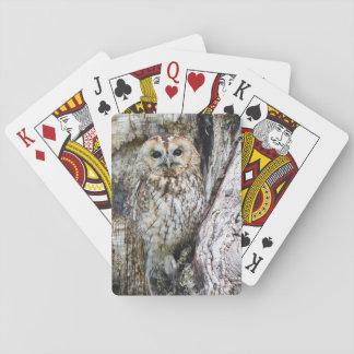 Eulen-Spielkarte-Eule in der Tarnung im alten Baum Spielkarten