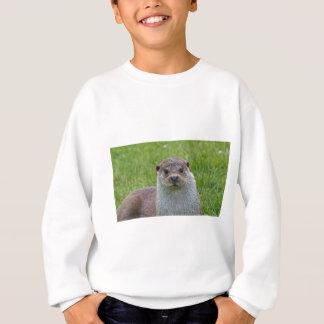 Europäischer Otter Sweatshirt