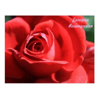Europas Rosengarten Postkarte