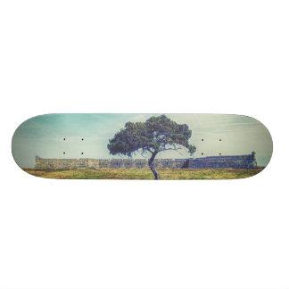 Ewig Skateboardbretter