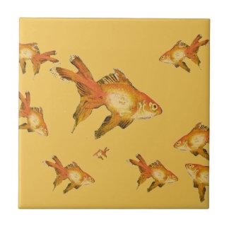 extravagante Goldgoldfishschwimmen im Aquarium Kleine Quadratische Fliese