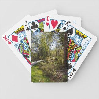 Fahrrad-Weg in Iowa-Foto-Fahrrad-Marken-Spielkarte Poker Karten
