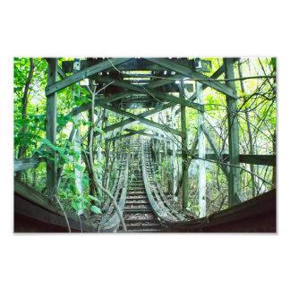 Fahrt durch den Dschungel Fotodruck