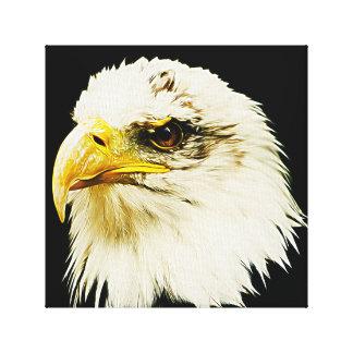 Falke-Blick Leinwanddruck