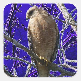 Falke mit lila Hintergrund der Fantasie Quadratischer Aufkleber