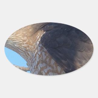 Falke Ovaler Aufkleber
