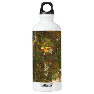 Fall Aluminiumwasserflasche
