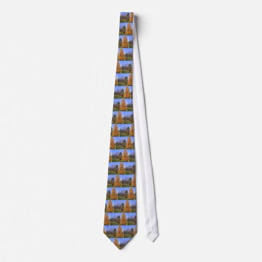 Fall-Bäume Individuelle Krawatten