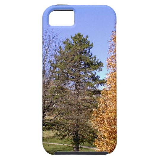 Fall-Bäume iPhone 5 Case