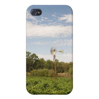 Fall Clares, Südaustralien Iphone iPhone 4/4S Case