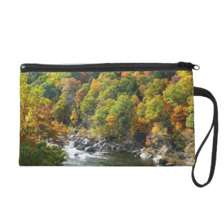 Fall-Farbe am Ohiopyle Staats-Park Wristlet