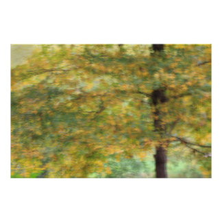 Fall-Farbe Poster