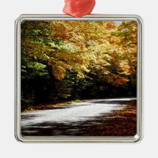 Fall-Farben Ausflug, St- Josephinsel Silbernes Ornament