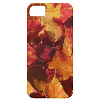 Fall-Herbst-Blätter iPhone 5 Etui