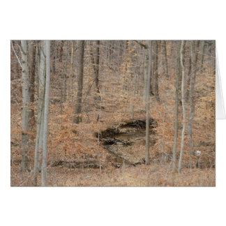 Fall-Holz Karte