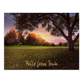 Fall in Liebe mit Iowa-Postkarte Postkarte