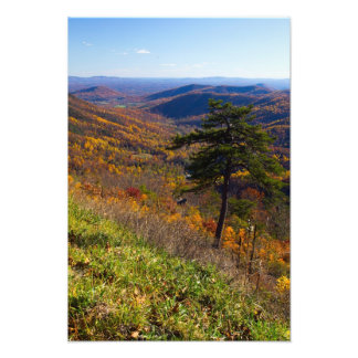 Fall in Shenandoah Nationalpark, Virginia Fotodruck