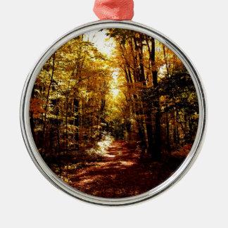 Fall-Weg auf der Insel Silbernes Ornament