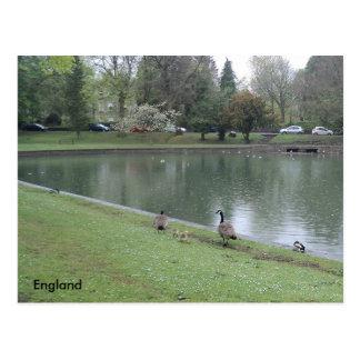 Familienausflug an Buxton Park, Derbyshire, Postkarte