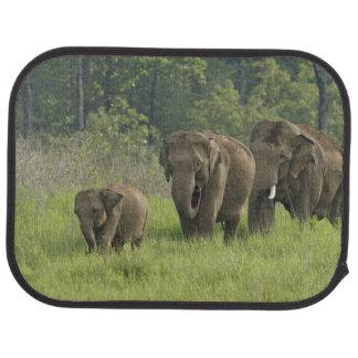 Familienherauskommen des indischen Elefanten Autofußmatte