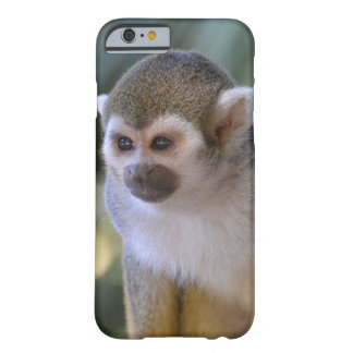 Fantastischer Eichhörnchen-Affe Barely There iPhone 6 Hülle